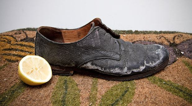 bảo quản giày da bị mốc, nổ da