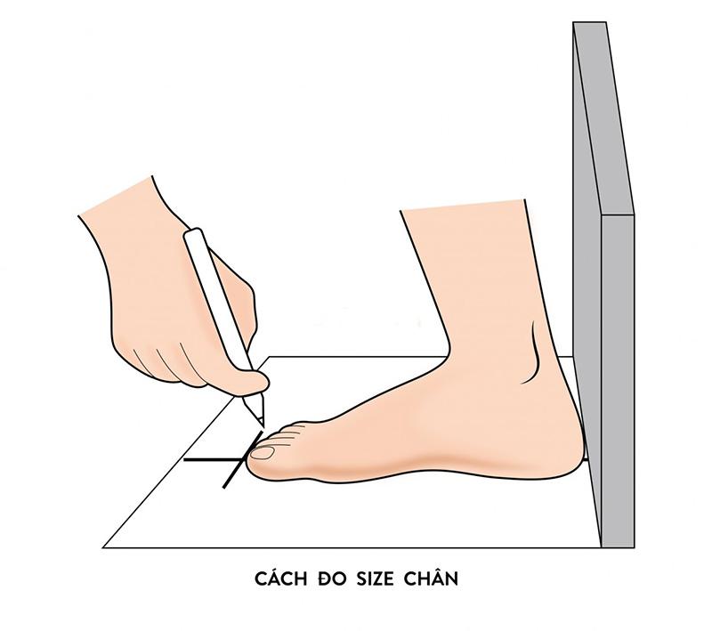 Đo size giày chuẩn